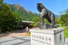 在雪岳山国立公园入口的偶象熊雕象  库存照片