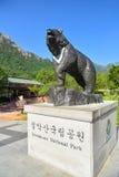 在雪岳山国立公园的黑熊雕象 图库摄影