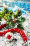 在雪报道的浅兰的背景的珊瑚小珠 免版税图库摄影