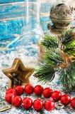 在雪报道的浅兰的背景的珊瑚小珠 库存照片