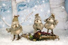 在雪撬的异想天开的圣诞节鸟 图库摄影