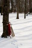 在雪撬的红色围巾在森林边缘 图库摄影