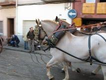 在雪撬的马 免版税库存图片
