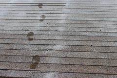 在雪木地板上的步 库存图片