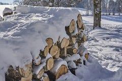 在雪木头盖的堆 免版税库存照片