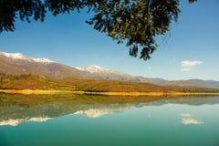 在雪松大农场后的清楚的山湖风景 库存图片