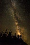 在雪松断裂的银河