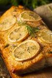 在雪松板条的自创烤三文鱼 免版税图库摄影