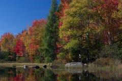 在雪松河流程的秋天颜色 库存图片
