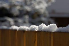 在雪松篱芭顶部的被日光照射了雪在后院 免版税库存图片