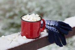 在雪桥梁的红色杯子在冬天公园 库存图片