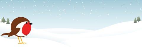 在雪横幅的罗宾 免版税库存照片