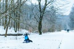 在雪橇赶走的孩子在冬日 免版税图库摄影