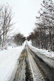 在雪的一条道路 免版税库存图片