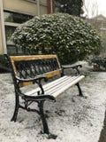 在雪的一条长凳 图库摄影