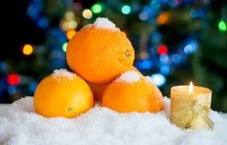 在雪的三个桔子与圣诞节装饰 库存图片