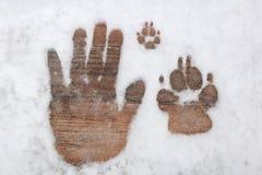 在雪的三个脚印代表在人和狗之间的友谊 库存图片
