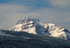 在雪的上升的狼山包装与结霜的树 免版税库存图片
