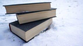 在雪的书 库存照片