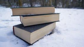 在雪的书 图库摄影