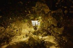 在雪的光在晚上 库存照片
