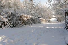 在雪的农厂车道 库存照片
