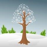 在雪的冬天树 免版税库存照片