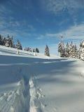在雪的冬天足迹 免版税库存图片