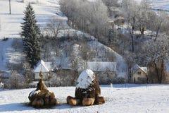 在雪的冬天绵羊在干草堆 免版税库存照片