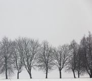 在雪的冬天 免版税库存图片