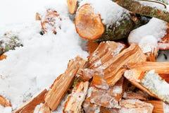 在雪的切好的桤木火木头 库存照片