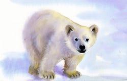 在雪的北极熊 免版税库存图片