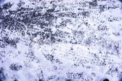 在雪的印刷品 免版税库存图片