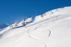 在雪的图画 免版税库存照片