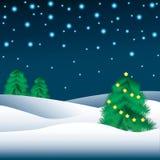 在雪的圣诞树 库存图片