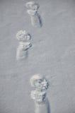在雪的圣诞老人踪影 免版税库存图片