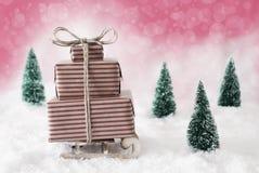 在雪的圣诞节雪撬有桃红色背景 图库摄影