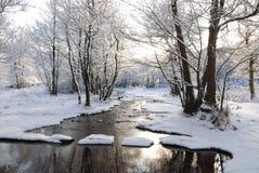 在雪的垫脚石 图库摄影