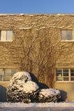 在雪的大厦 免版税图库摄影