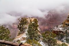 在雪的大峡谷 免版税库存图片