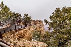 在雪的大峡谷 免版税库存照片