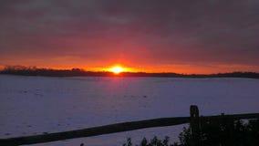 在雪的太阳 免版税库存图片