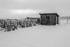 在雪的客舱 免版税图库摄影