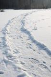 在雪的小径与脚印 免版税库存图片