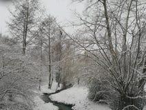在雪的小河床 库存照片