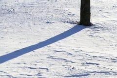 在雪的影子 库存照片