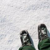 在雪的技艺 免版税库存照片