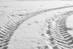 在雪的拖拉机轨道 库存照片