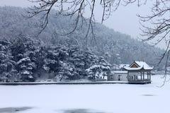 在雪的挂接Lu 免版税库存照片