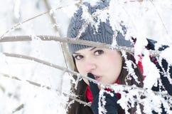 在雪的捉迷藏 图库摄影